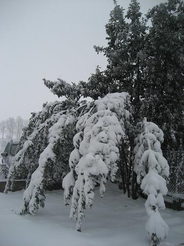 La forza del ghiaccio! by meteomike