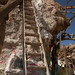 03-18-12: Behind Salvation Mountain