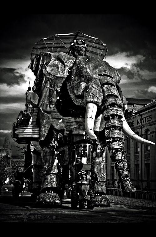 [HISTOIRE ET PATRIMOINE] Grand Éléphant - Les Machines de l'Ile