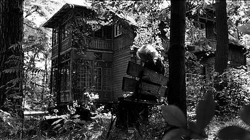 「木洩れ日の家で」 by Poran111