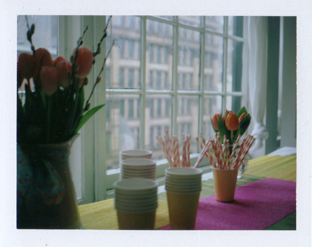 Holly Becker Blogging Your Way NYC Polaroid
