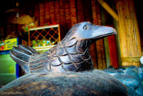 Wooden Bird by {israelv}