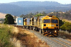 Trains In Tasmania - 2100 [ Wedgie ] Approaching Colebrook