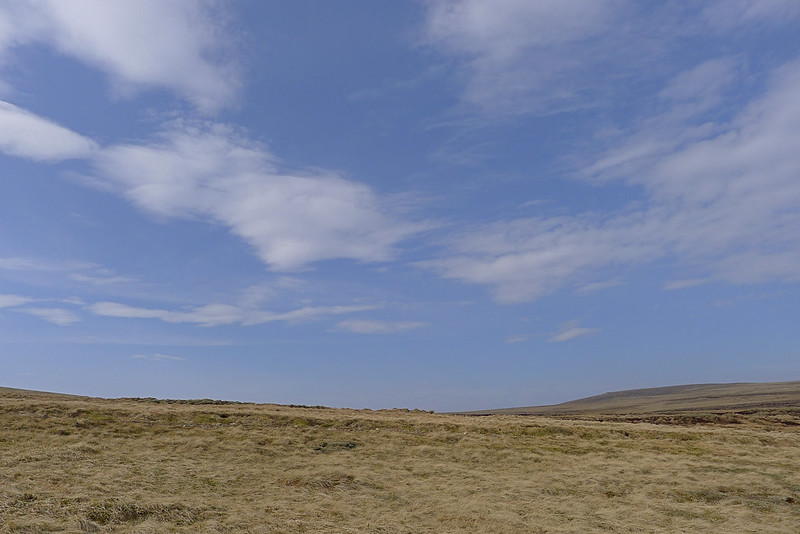 Blue skies over the Great Moss