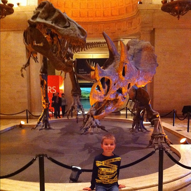 Dinosaurs are attacking each other and Angry Kid doesn't even notice what is going on behind him.
