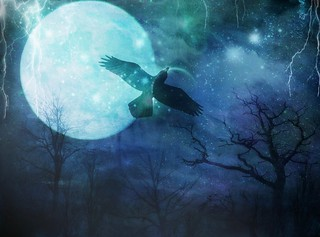 ~Midnight Flight of Raven~