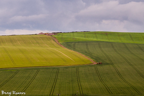 Green Fields by Mas que luz