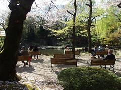 Cherry blossom @ Yasukuni Shrine