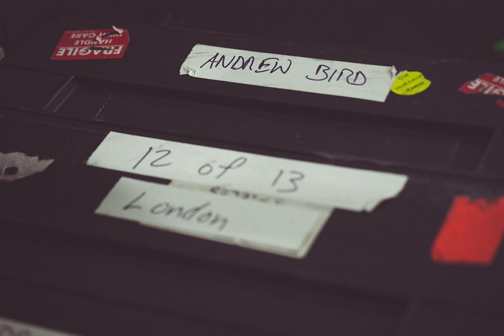BTS: Andrew Bird