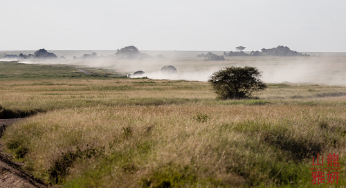 africa landscape tanzania safari vehicle dust serengetinationalpark shinyanga seroneraregion tzday02 africanwildcatsexpeditions