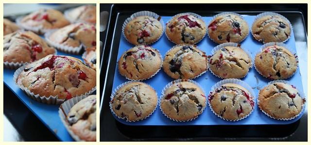 Wild Berry Muffins 2