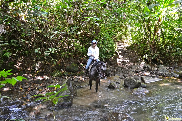 6804095164 6cb7dc2276 z Horseback Riding Tour in Costa Rica