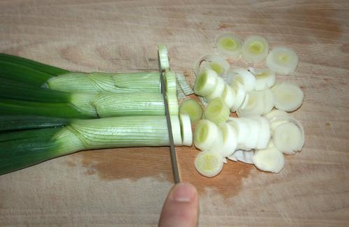 15 - Frühlingszwiebeln schneiden / Cut spring onions