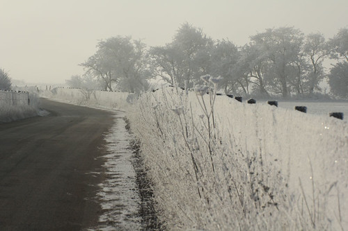 hoar-frost-approach-road-11