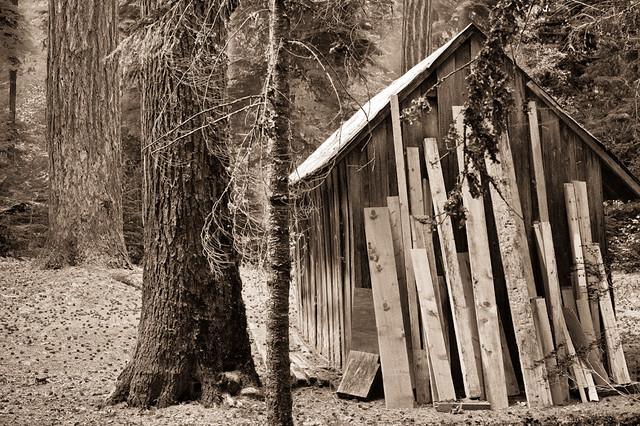 Scenes at a cabin 3