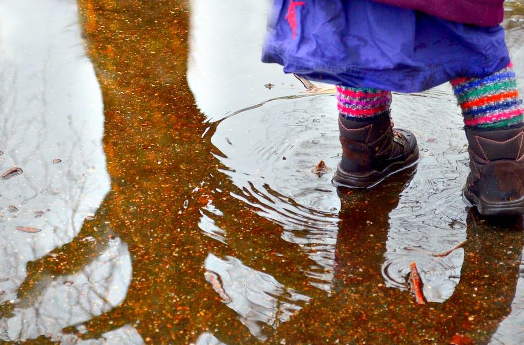 Die Pusteblumenprinzessin weinte viele Tränen, bis den Zworgs das Wasser Knöchel hoch stand.