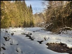 Schwarzsee Winter 2012