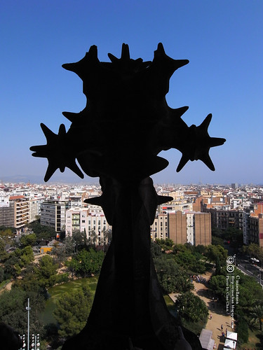 Hola Barcelona~巴塞隆納。聖家堂 Sagrada Familia 沙包重量構成的弧線  R1042691