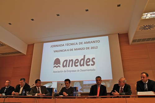 MAGMA and IGNEA organize a workshop on asbestos in Valencia