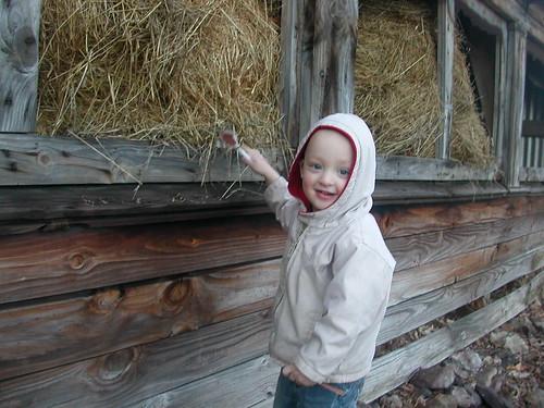 March 10 2012  Elden (2)
