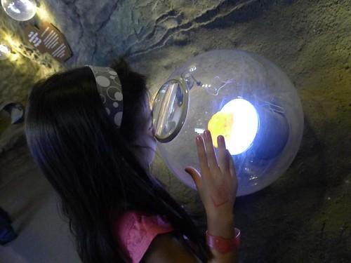 mind museum