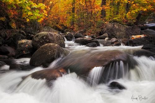 new york autumn nature forest canon landscape flow moss hiking foliage preserve adirondack 1740l cascadecreek adambaker 5dmkii