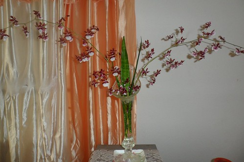 Orchid Design - Florist in Barbados