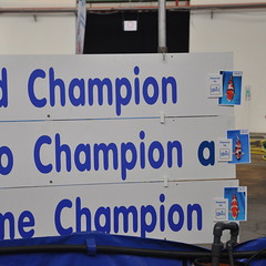 Vele Champions in één vat