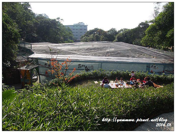 森林鳥花園52