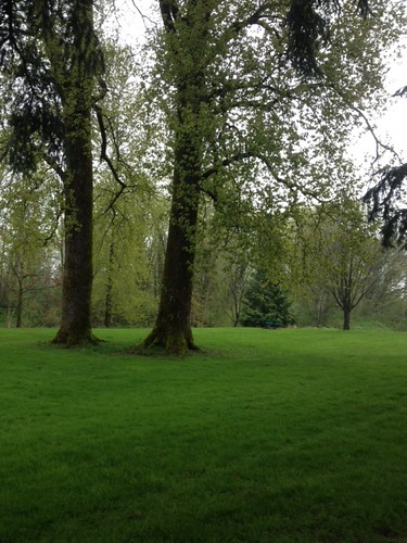 Soggy walk, but still beautiful and peaceful.
