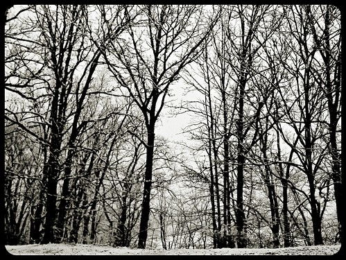Snow day, 2012 by Fotochoice Photography