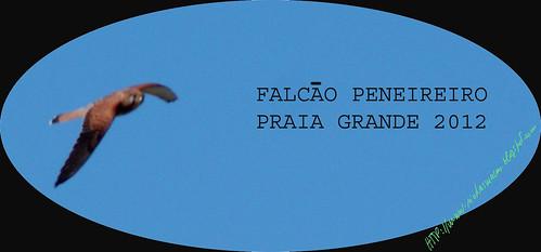 FalcaoPeneireiro2012