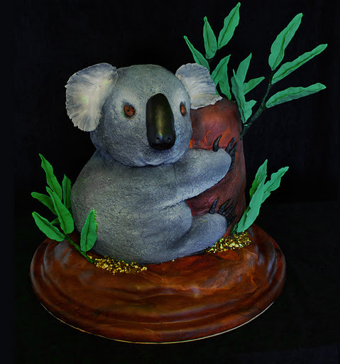 Koala Bear Cake Flickr Photo Sharing