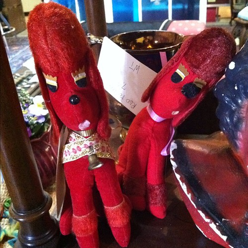 Red poodles.