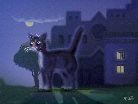 small-cat-alone