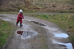 trail, puddle, soil, mud,