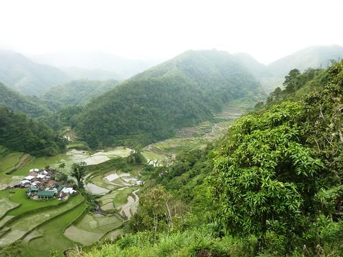 Luzon-Bangaan (101)