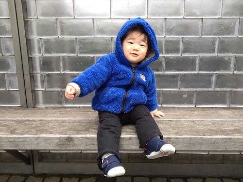ベンチに座るとらちゃん(2012/3/18)