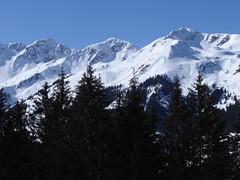 Die Gipfel der Wildschönau