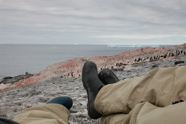 antarctica-blog-32