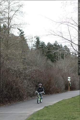 nick circumnavigates a public park on his bicycle    MG 8556