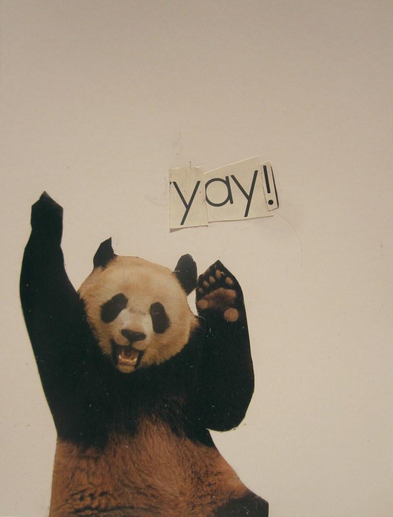 �yaY�_yay!panda partofzip+four,mymailsomethingeveryda… Flickr