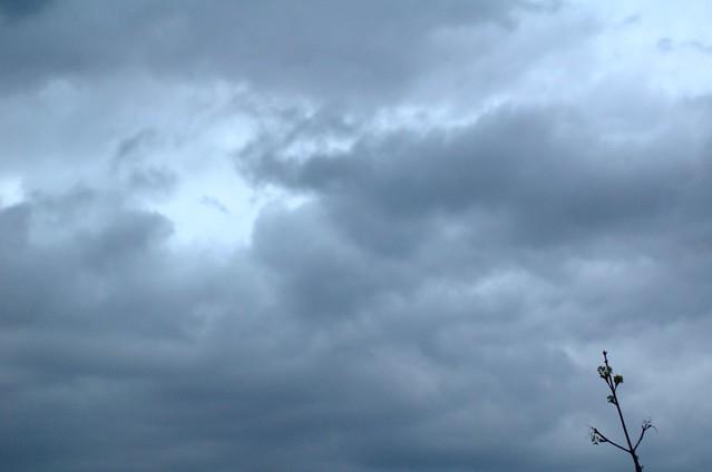 94/366: Brotes contra las nubes