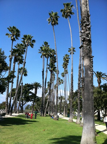 Quick break @ Palisades Park in Santa Monica