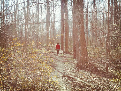Guelph Arboretum wander by scosborne