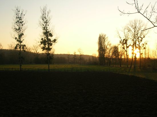 camposs