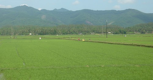 V-Route Quy Nhon-Da Nang (27)