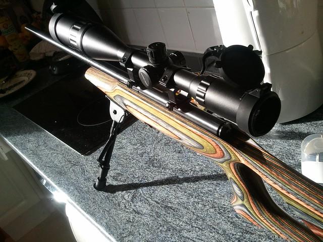 Browning tronbone & Savage MkII FV Custom 6956688949_250e62b419_z