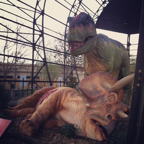 T-Rex dinner time, Memphis Zoo, Memphis, Tenn.