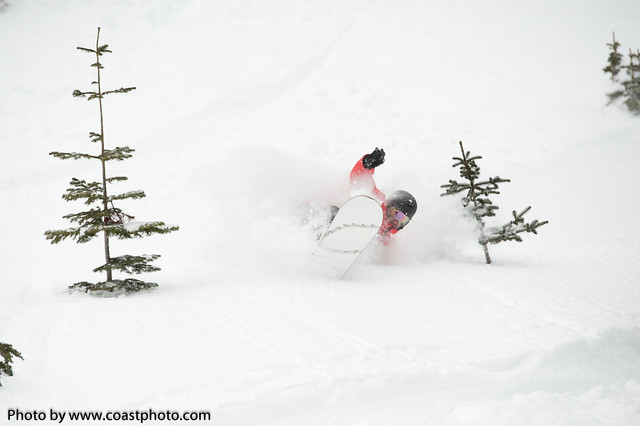 Whistler Blackcomb powder